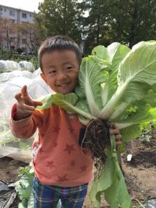 野菜と息子くん